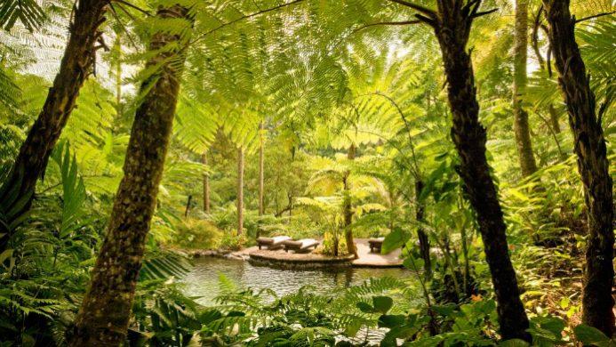 COMO Shambhala Estate spa lounges surrounded by lush jungle