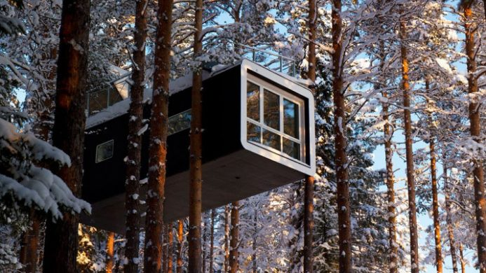 luxury treehouse and snow-covered trees