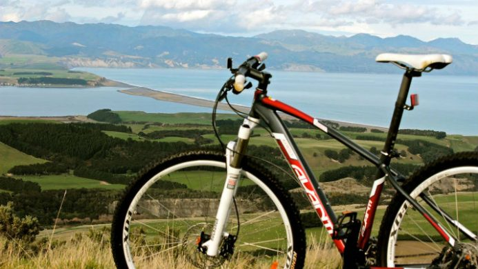 Wharekauhau bicycle overlooking green hills and water