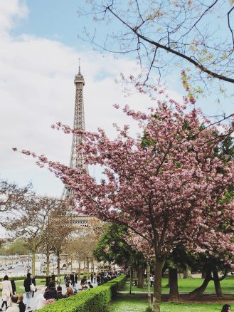 Eiffel Tower Paris in the Spring