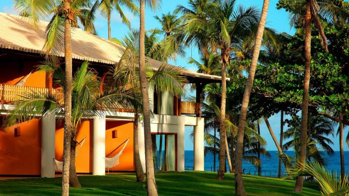 Ecoresort surrounded by palm trees