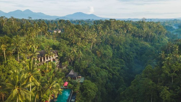 Hotel and infinity pool nestled in the jungle