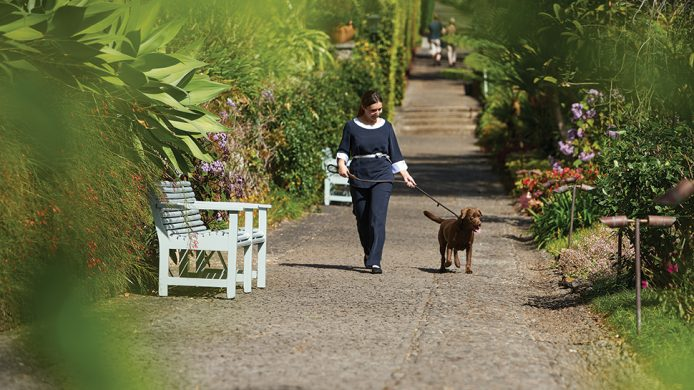 Dog walker at Belmond Reid's Palace